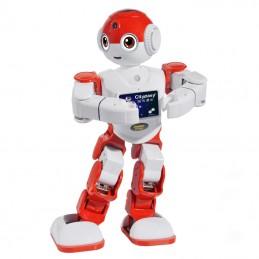 Robot Umanoide...